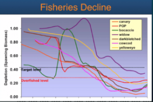 Image of fisheries Decline chart