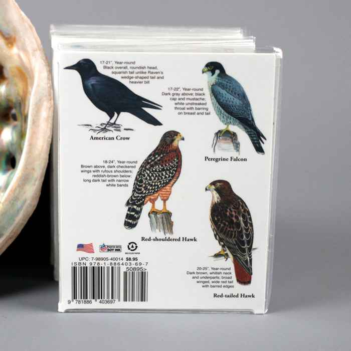 Local Birds Pocket Guide